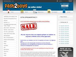 www.fast2toys.nl/