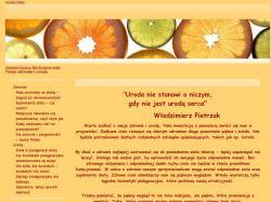 www.paznokcie-sklep.pl/
